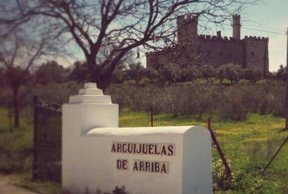 Entrada Castillo de Cáceres